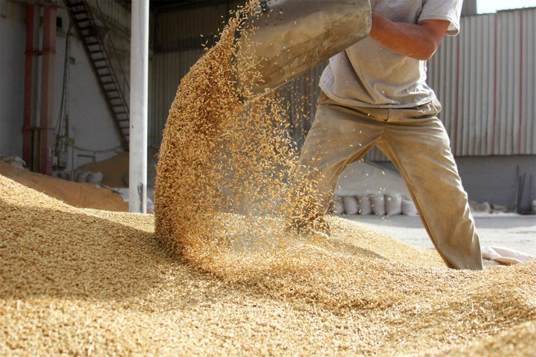 AFIA cancels Feed Facility of the Year for 2020