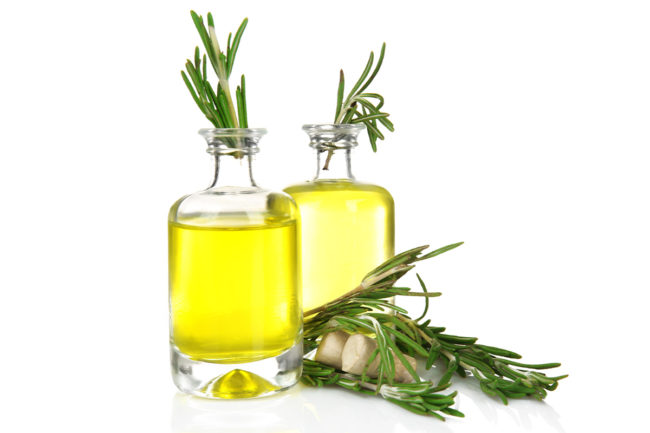 Layn Natural Ingredients adds natural rosemary extract, several others to Non-GMO Verified portfolio