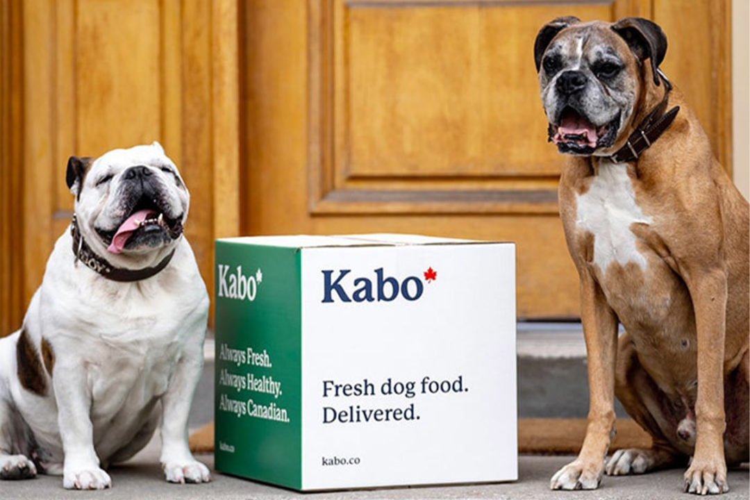Dog owners in Canada are turning to e-commerce for pet food purchases