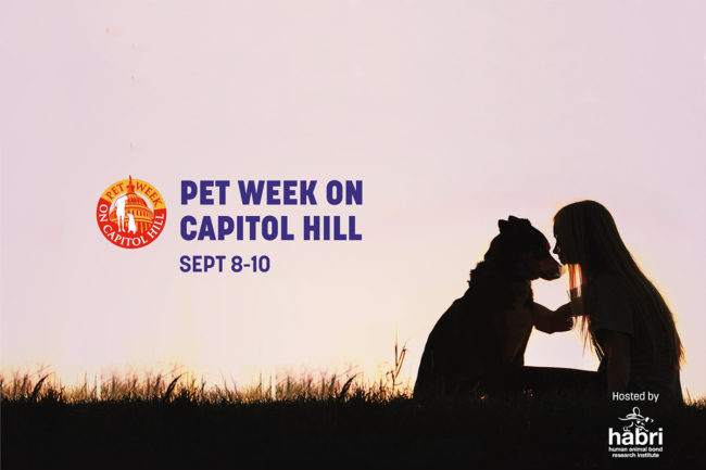 Recapping Pet Week on Capitol Hill 2020, a virtual convention