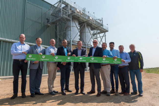 Ingredion increases capacity at pulse-based protein facility