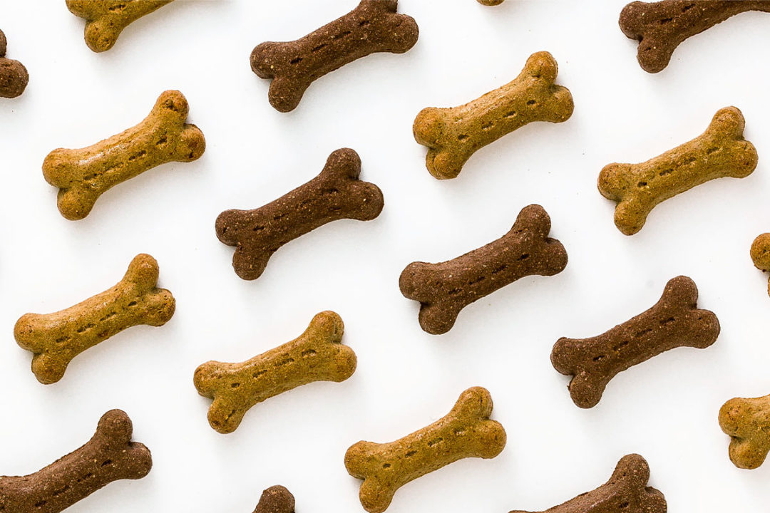 New dog and cat treats launched in 2020