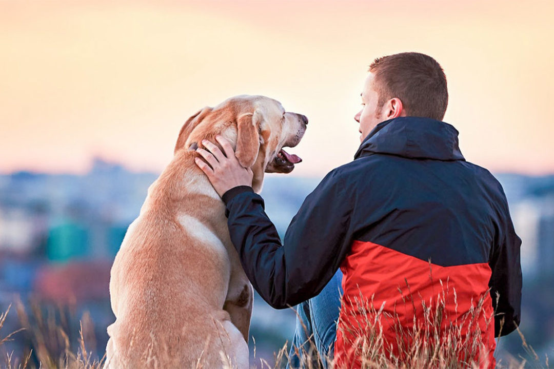 Royal Canin commits to new membership level with Pet Sustainability Coalition