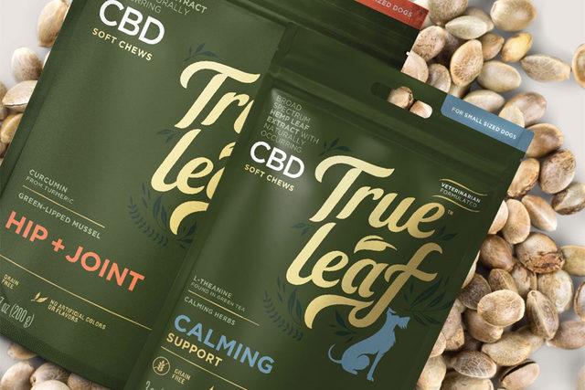 091720 true leaf hemp tech lead