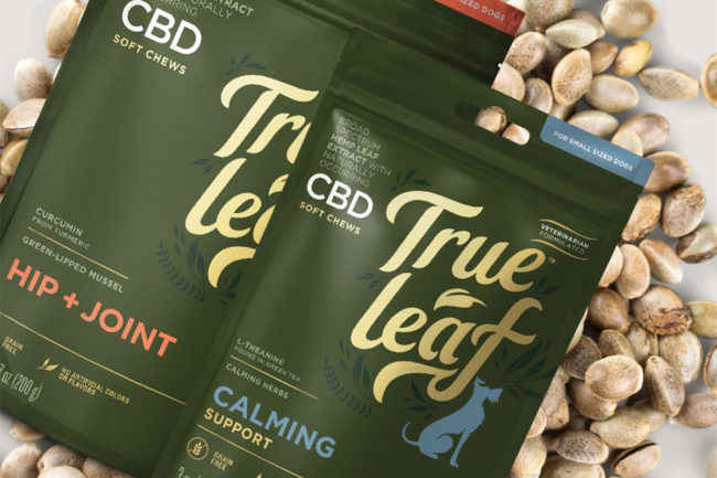 Hemp Technology purchases all assets of True Leaf Pet