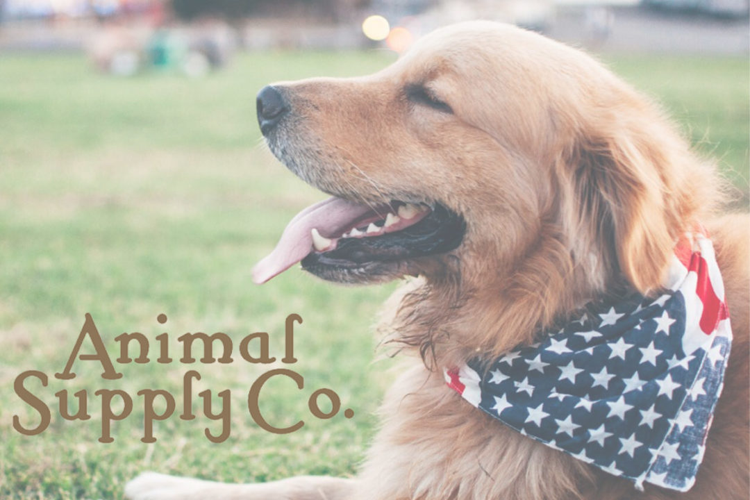 Animal Supply Company appoints new CEO