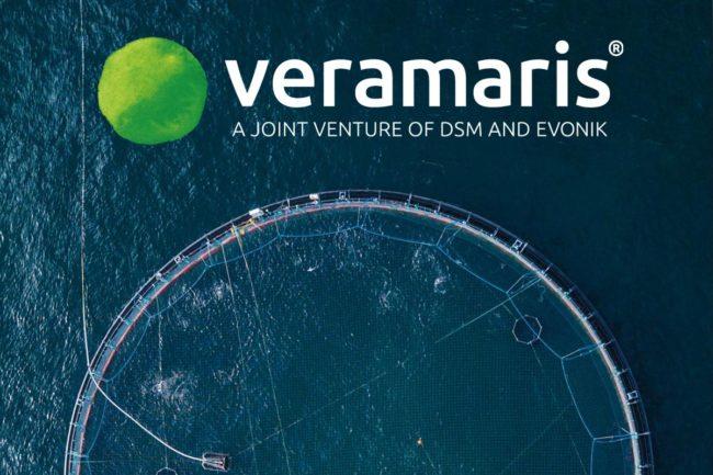 Jeff Alix joins Veramaris as head of global business development