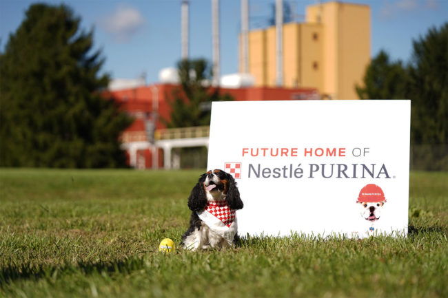 Purina to open 22nd US pet food processing facility in Eden, North Carolina