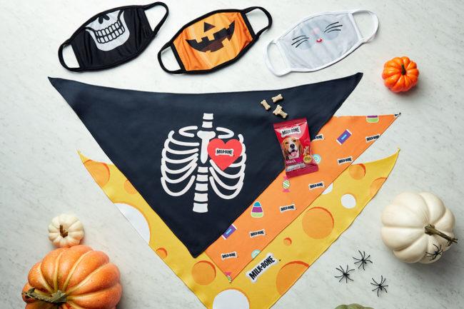 Milk-Bone offers matching face masks, bandanas and mini Milk-Bone treats