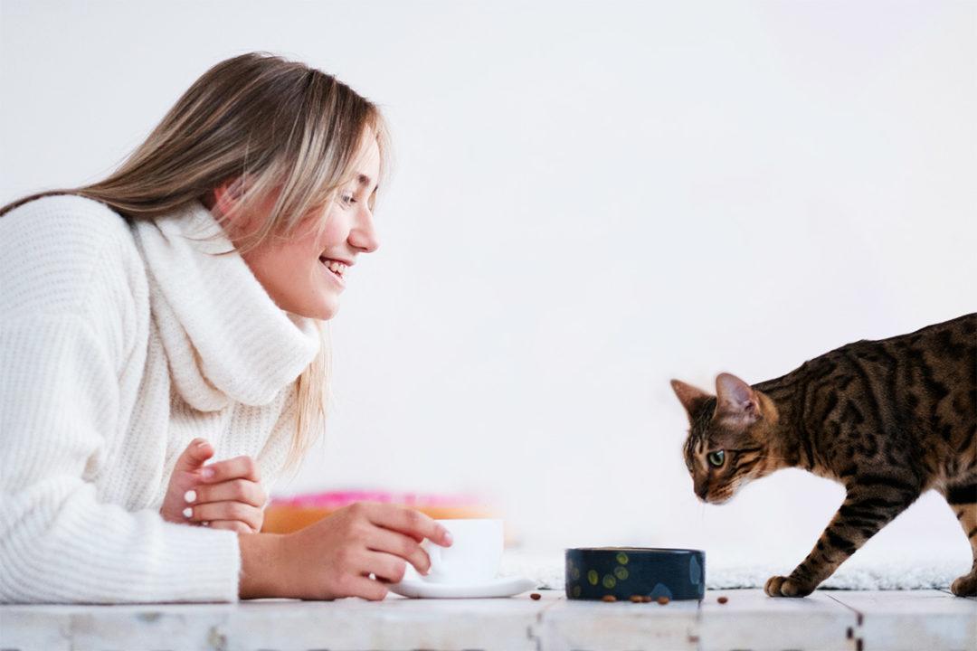 Pet spending has no bounds for most pet parents, according to RestoraPet