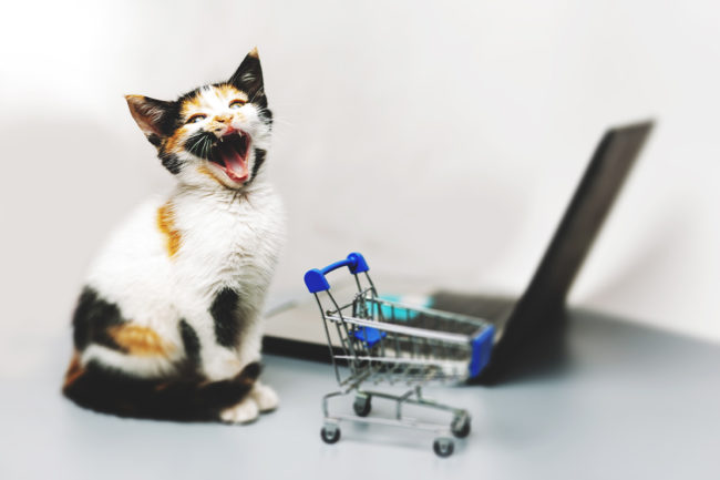 NielsenIQ shares top 5 pet food-related keyword searches since April 2020