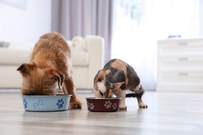 United States accounts for 47% of global pet food sales
