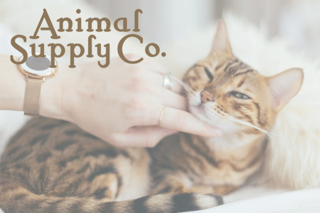 Leadership changes for Animal Supply Co.