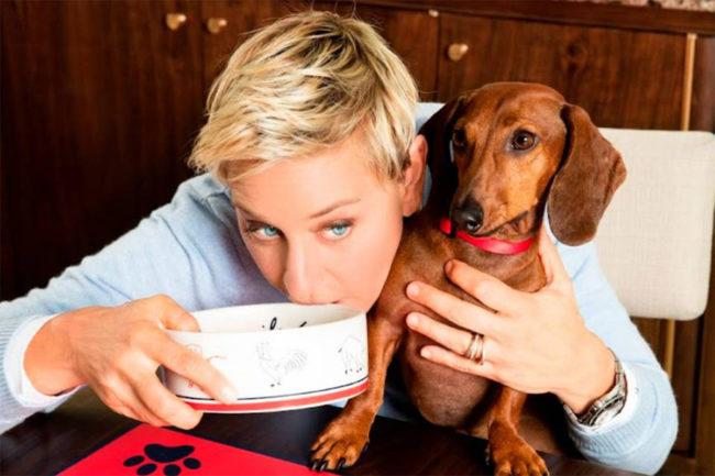 Ellen DeGeneres (Prosper Brands LLC) partners with Kradle to accelerate growth
