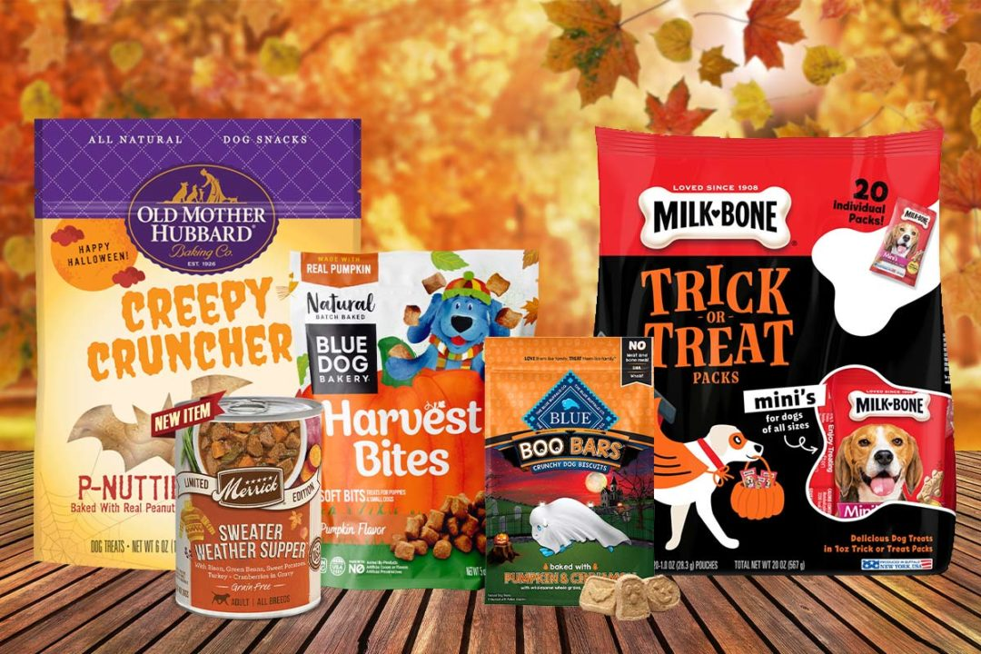 Fall and Halloween-themed pet food and treat products 2020