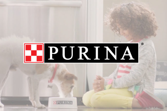 Nestle reports nine-month earnings, Purina one of strongest segments