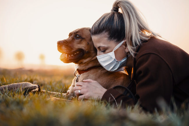 APPA finds slight changes in pet product purchasing behavior amid continued pandemic impacts