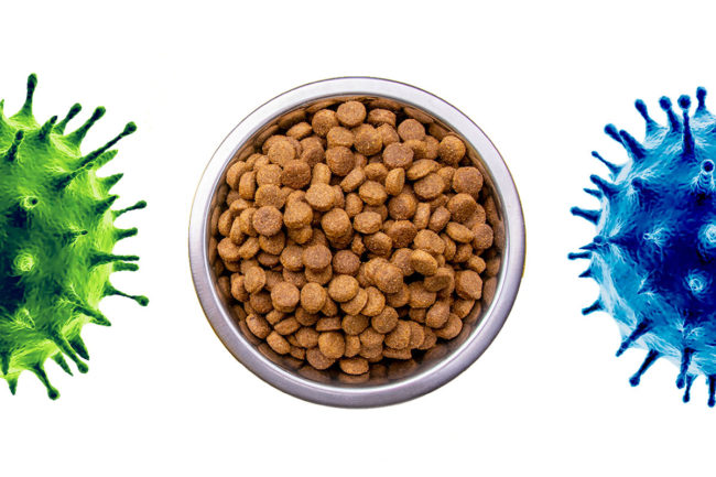 Pet food processors update Pet Food Processing on COVID-19 business impacts