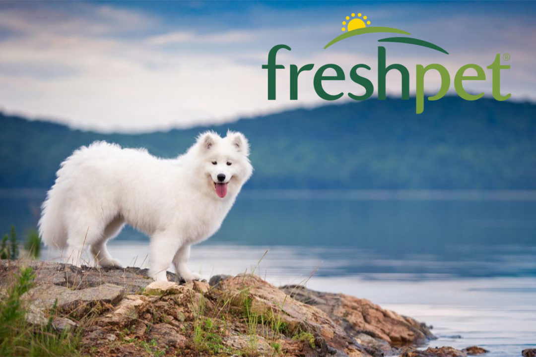 Freshpet continues growth as it preps new guidance plan through 2025