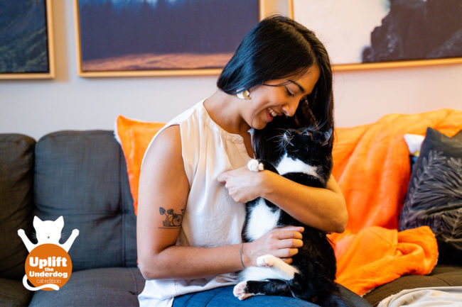 """Petcurean launches adoption campaign for """"hard-to-adopt"""" shelter cats"""