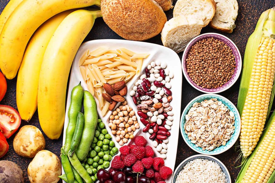 Fact sheet debunks carbohydrate myths for pet food