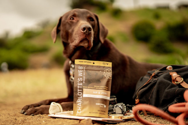 CBD dog supplements certified by two hemp-based CPG industry authorities