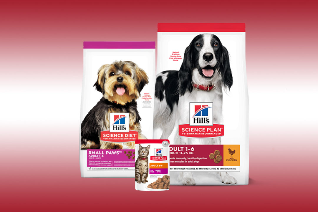 Colgate presents upcoming innovations and brand strategies for Hill's Pet Nutrition
