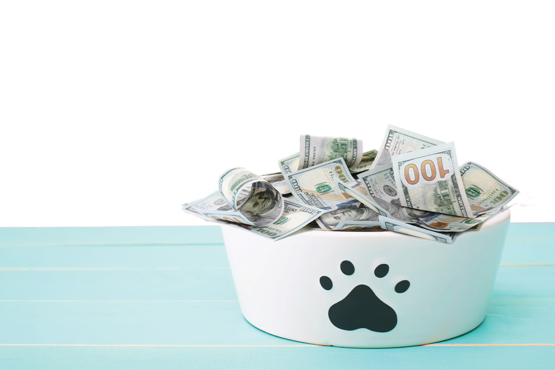 APPA releases US pet spending data from its 2019-2020 National Pet Owners Survey