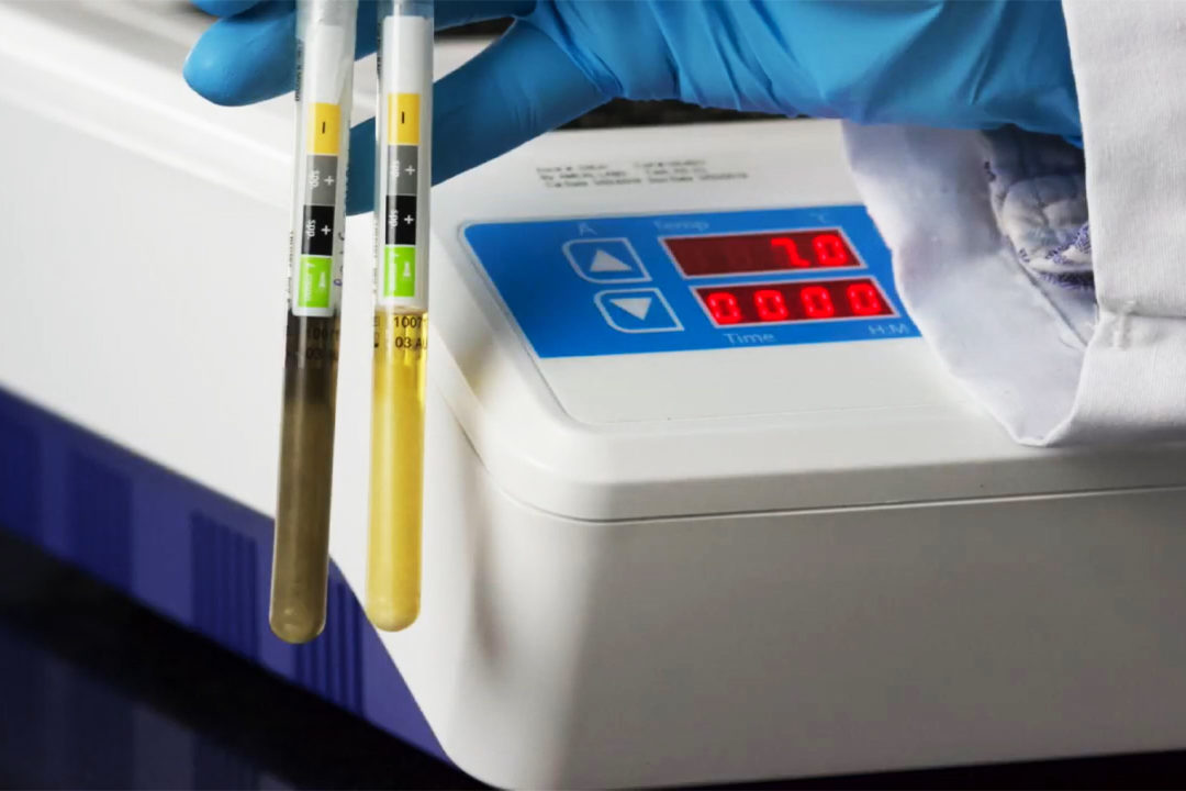 Hygiena introduces new environmental test for detecting Listeria monocytogenes