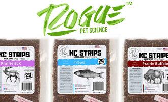 051420 rogue kc canine lead
