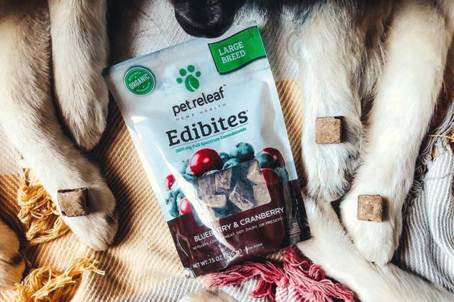 Pet Releaf Blueberry & Cranberry Edibites