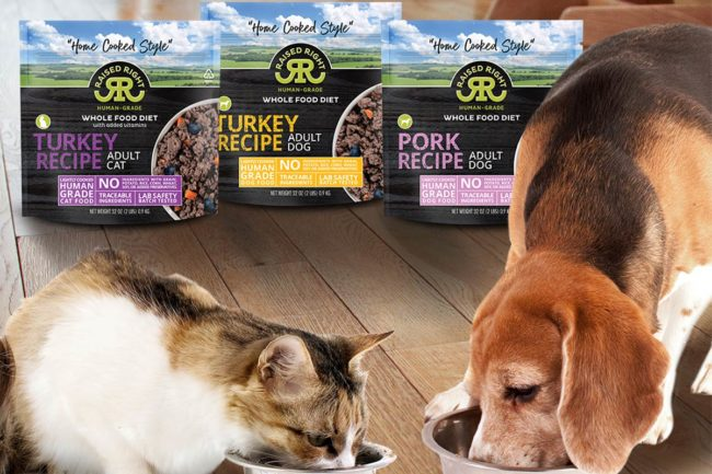 Cat and dog eating new Raised Right human-grade pet foods: Turkey Recipe for cats, Turkey Recipe for dogs and Pork Recipe for dogs