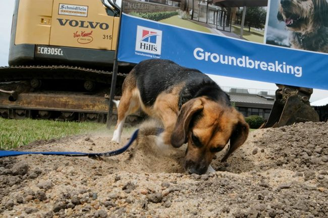 Hill's breaks ground at Small Paws pet nutrition and veterinary engagement center