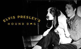081919_elvis-presley-hound-dog_lead