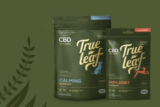 082019_true-leaf-cbd_lead