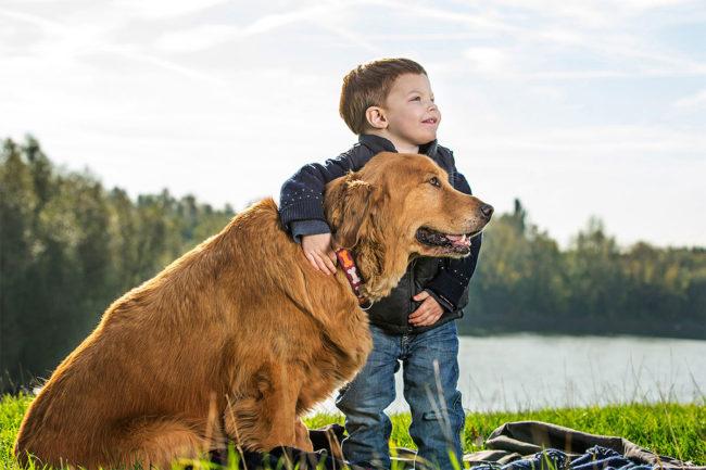 Elanco purchases Bayer Animal Health business