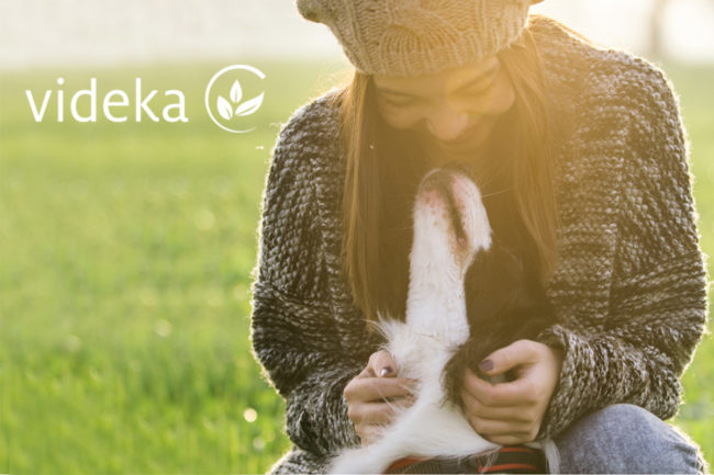 Diana Pet Food and Kalsec, Inc establish pet food oxidation joint venture, Videka