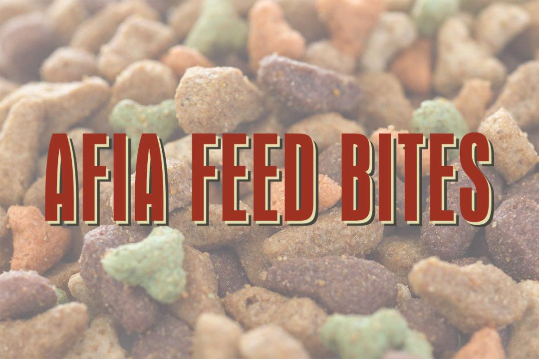 AFIA debuts new blog, Feed Bites