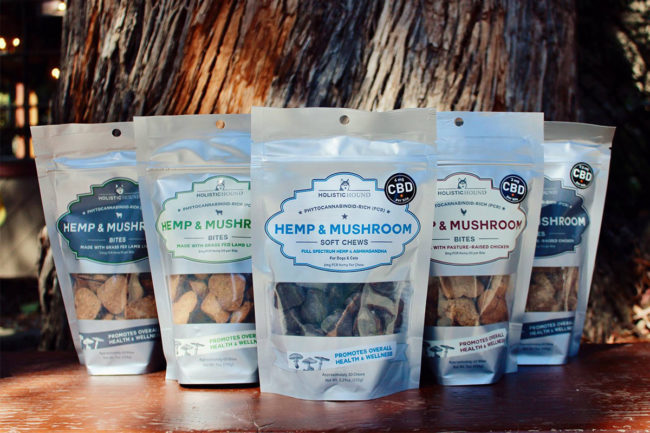 Holistic Hound says it is one of the first pet brands to use cannabigerol, CBG, in pet supplements