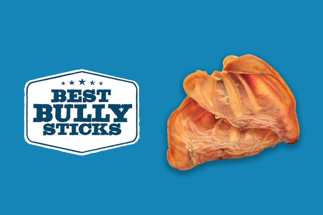 Best Bully Sticks pig ear dog treats recalled for possible Salmonella