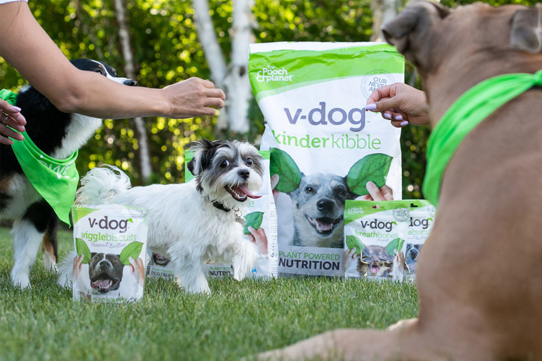 V-Dog teams up with plant-based restaurant to bring dogs and dog owners together at the dinner table