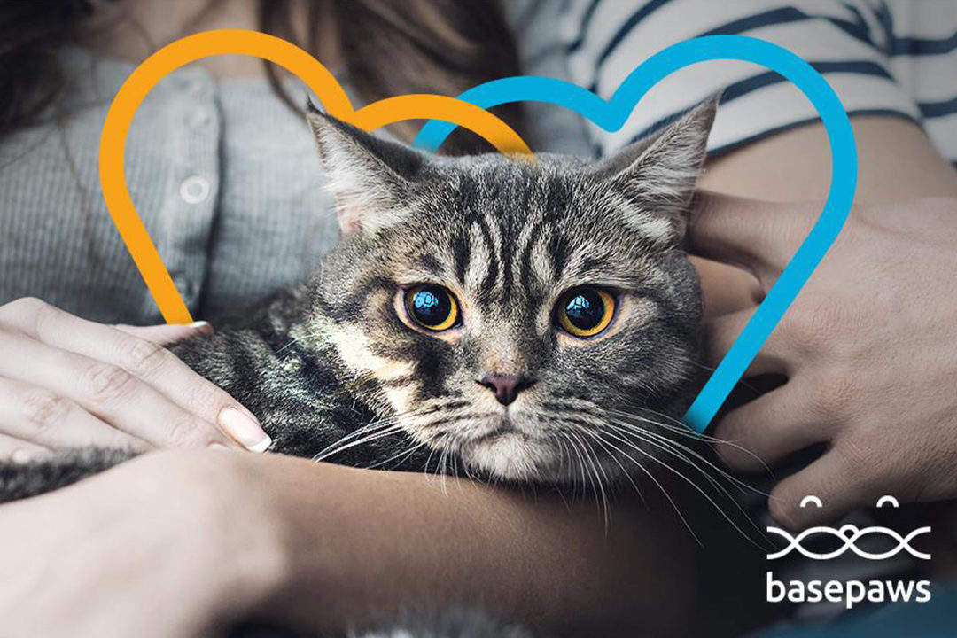 Purina hosts first ever Pet Care Innovation Summit with 25 startups