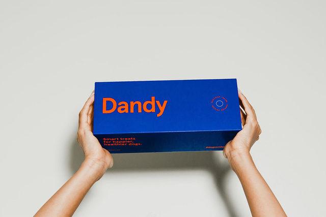 111319_dandy_lead