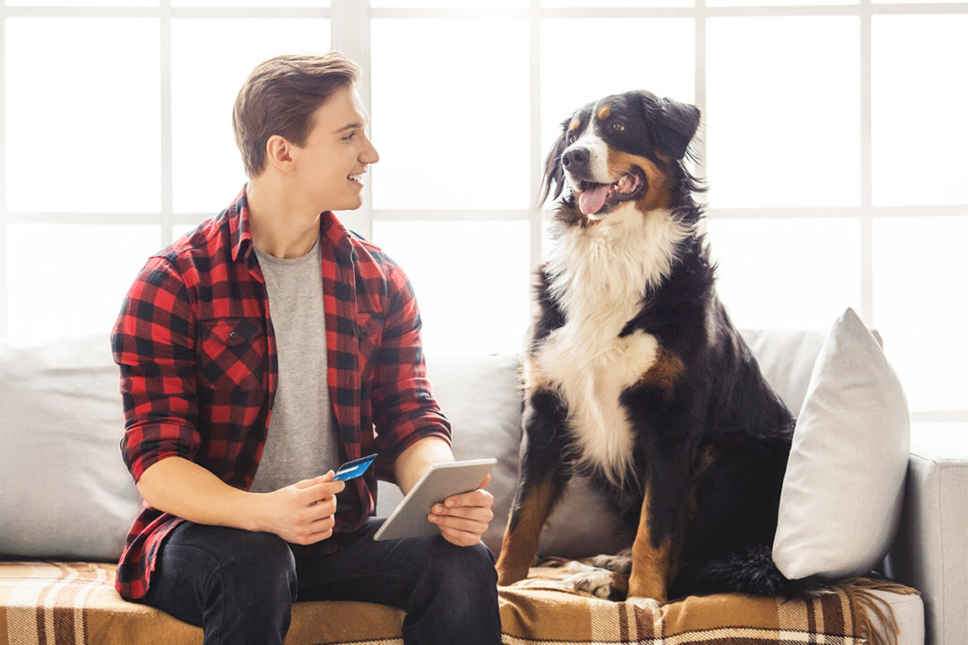 Packaged Facts expects pet product e-commerce to make up 26% of the market by 2023