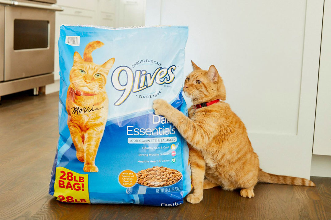 Smucker's cat food and treat brands carry the company's pet food segment through the second quarter