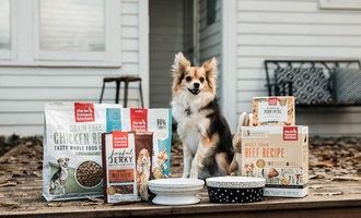 112719_honest-kitchen-pet-food-experts_lead