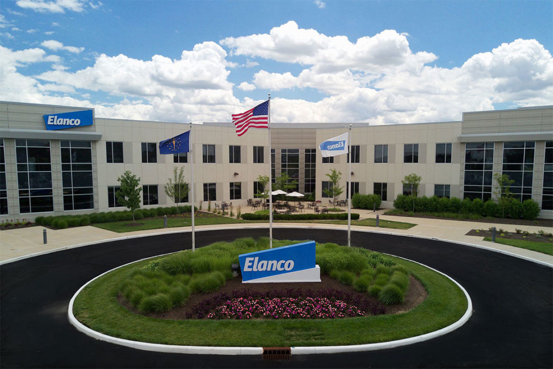 Sara Place named chief sustainability officer at Elanco Animal Health