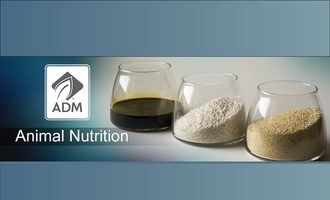 Adm-animal-nutr-header-idweb