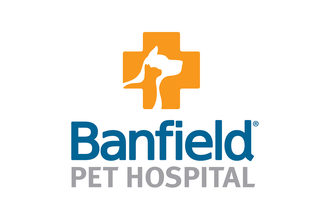 Banfield-vet-chat_lead
