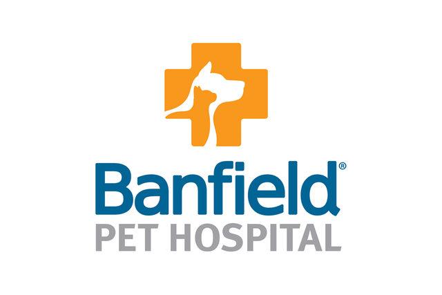 Banfield-vet-chat_lead